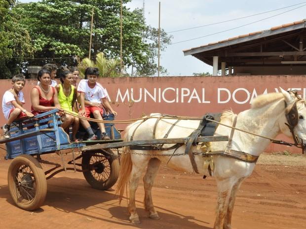 Diariamente, famílias de ciganos levam filhos para escola em carroças, em Itumbiara, Goiás (Foto: Adriano Zago/G1)