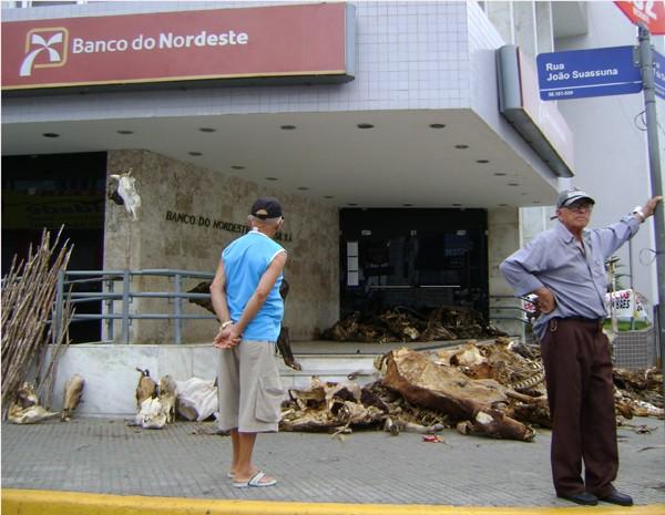 Carcaças de gado foram colocadas em frente ao Banco do Nordeste em Campina Grande (Foto: Taiguara Rangel/G1)