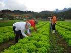 FAO cita Brasil como candidato a futuro maior exportador de alimentos