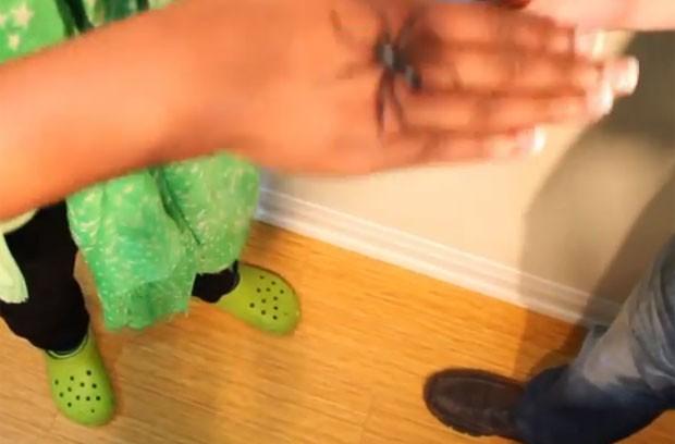 Mágico Chris Ballinger fez aranha aparecer na mão de GloZell (Foto: Reprodução/YouTube/Chris Ballinger)