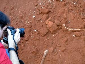 Fotógrafo registra ossos em obra no cemitério de distrito em Ribeirão Preto (Foto: Clayton Castelani/ G1)