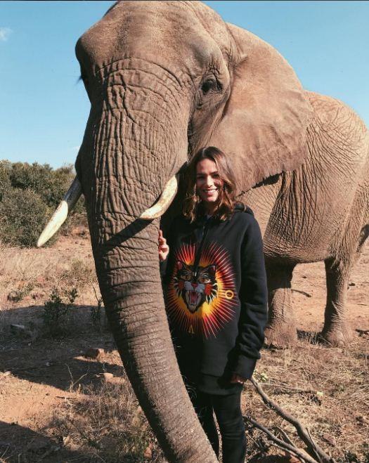 Bruna Marquezine fica pequenininha perto de elefante na África do Sul (Foto: Reprodução/Instagram)