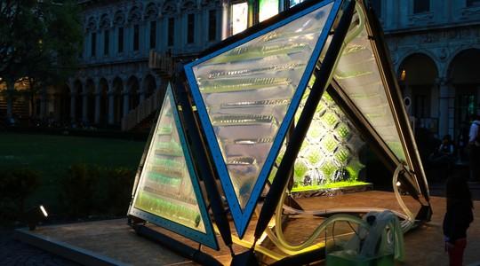 O gazebo de algas. Ele fornece comida e oxigênio (Foto: Divulgação)