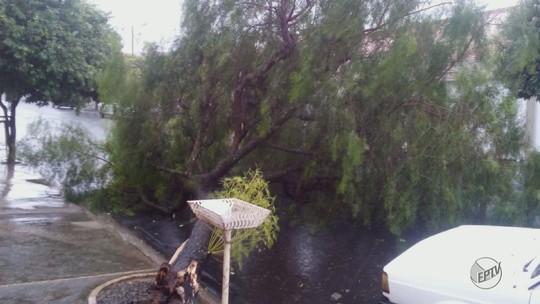 Chuva causa transtornos em Matão, Porto Ferreira e São José do Rio Pardo, SP