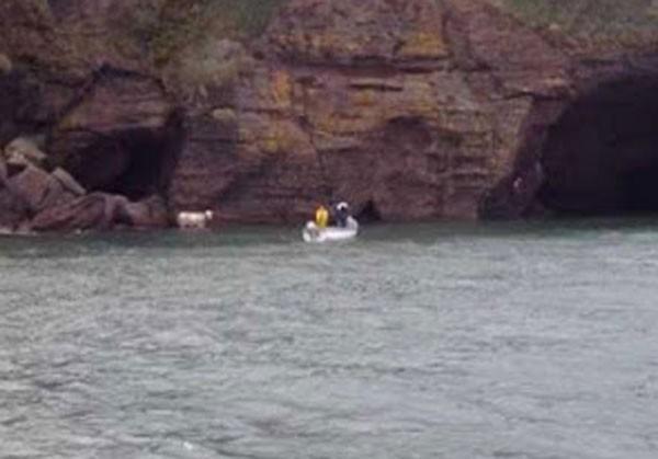 Resgate ocorreu em Dunmore East, na costa da Irlanda. (Foto: RNLI)