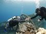 Naufrágio histórico e água cristalina: o batismo no 'Maracanã' do mergulho