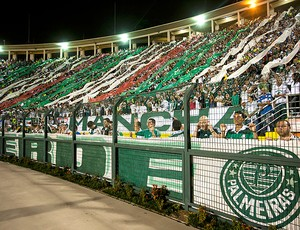 Torcida Palmeiras (Foto: Ag. Estado)