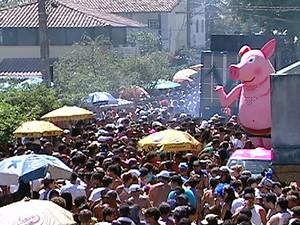 Tradicional bloco da Barra do Jucu, 'Porca da Quarta' fez desfile contra a homofobia (Foto: Reprodução/TV Gazeta)