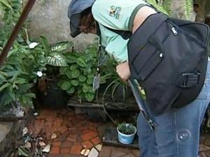Agentes da vigilância epidemiológica visitam casas em Sorocaba (Foto: Reprodução/TV Tem)