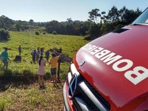 Acidente em rodovia de Rondônia (Foto: Gabriel Rodrigues/Arquivo pessoal)