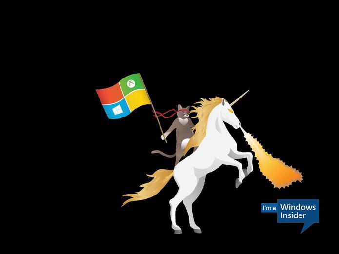 Ninjacat e o unicórnio (Foto: Reprodução/Microsoft)