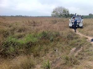 Matagal onde foram encontradas roupas e pertences dos jovens mortos (Foto: Janaína Carvalho/G1)
