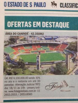 Leilão Canindé (Foto: Reprodução)