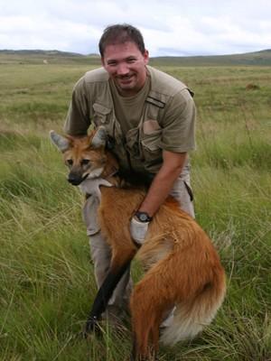 Biólogo Togério Cunha com o lobo-guará (Foto: Fabiana Rocha/Divulgação)