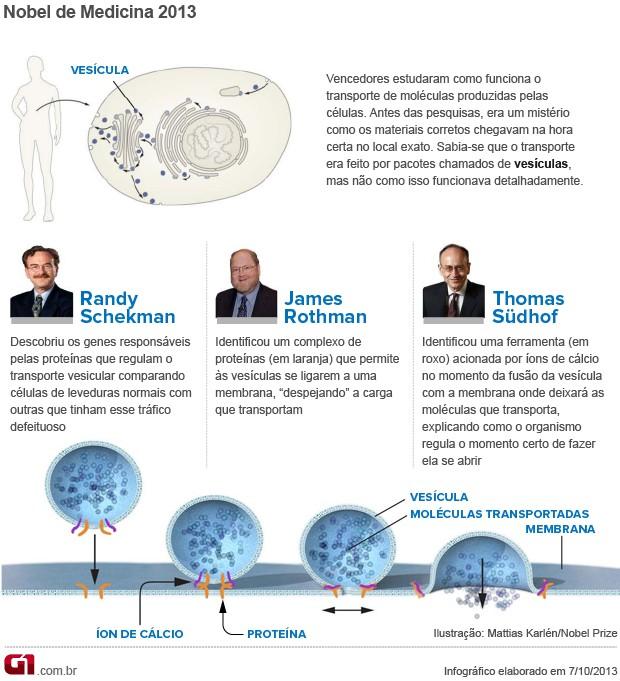 Info Nobel Medicina 2013 v3 (Foto: Editoria de Arte/G1)