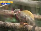 Zoológico de Pomerode será ampliado e terá novas espécies