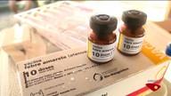Febre amarela deixa Ibatiba, no Sul do ES, em situação de emergência