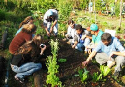 fazenda_sustentavel_agricultura (Foto: Acervo/Ed. Globo)