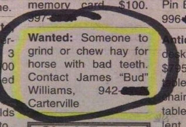 Vaga para quem pudem mastigar feno para cavalo com dentes ruins