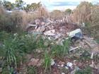 Terreno baldio em Boa Vista aumenta incidência de mosquitos, diz morador