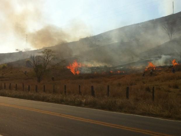 Fogo destrói a vegetação na altura do km 161 da BR-259. (Foto: Diego Souza/G1)