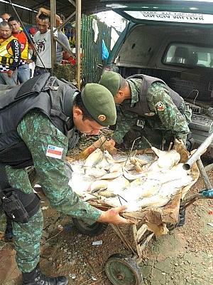 Material era comercializado em feira (Foto: Divulgação/Batalhão Ambiental)