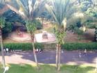 Associação tenta evitar comércio no Parque Infantil, em Araraquara, SP
