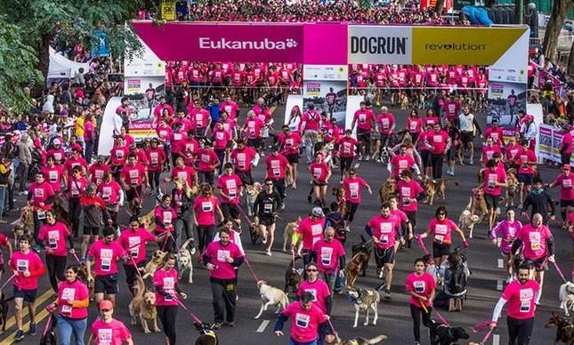 Mais de mil pessoas participaram do Dogrun, maratona de cães e donos em Buenos Aires (Foto: Divulgação)