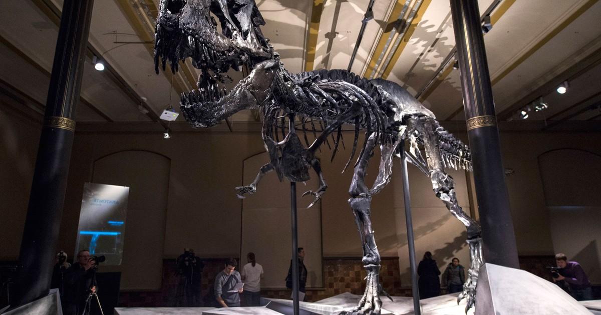 Dinossauros lutavam para sobreviver muito antes da queda de meteorito