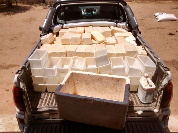 Batalhão de Polícia Ambiental apreendeu 510kg de queijo em Traipu (Foto: Arquivo Pessoal)