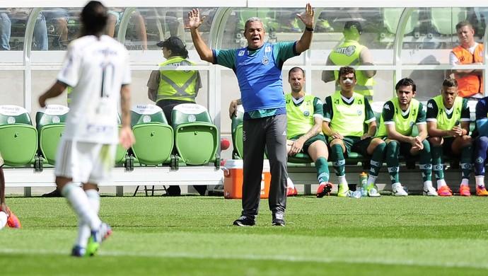 Palmeiras x Goiás - Helio dos Anjos (Foto: Marcos Ribolli)