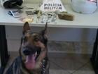 Cadela da PM ajuda a encontrar droga em terreno baldio em Valadares
