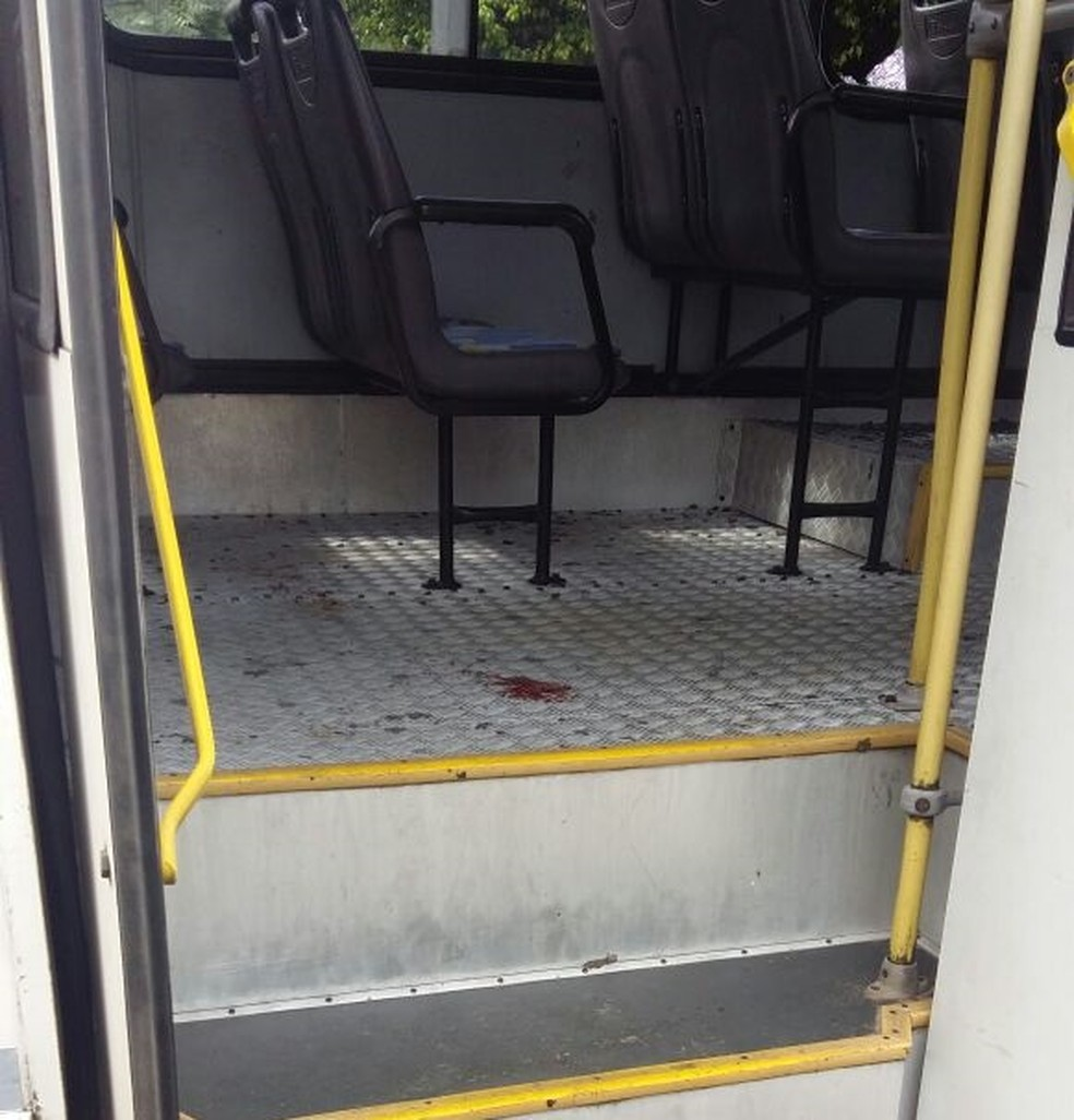 Mulher foi baleada durante assalto a ônibus em Natal (Foto: Divulgação )