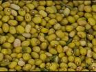 No sul de MG, feijão bolinha alcança bons preços no mercado