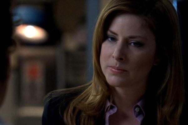 Casey Novak (Diane Neal) (Foto: .)