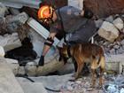 Bombeiros usam cães para buscar vítima de desabamento de igreja