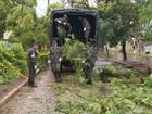 Porto Alegre sofre as consequências de um forte temporal com ventania