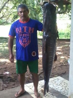 Lúcio pescou no Rio Paraguai um peixe do tamanho dele. (Foto: Viviane Ribeiro da Silva/ Arquivo pessoal)