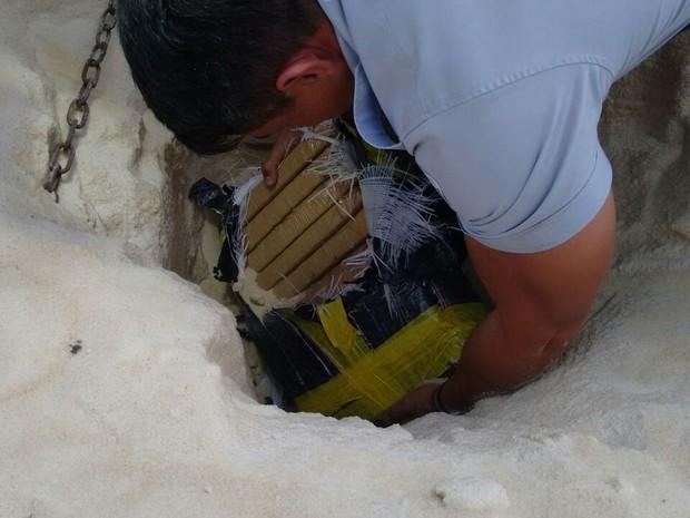 Drogas estavam escondidas na carga  (Foto: Polícia Rodoviária/ Divulgação)
