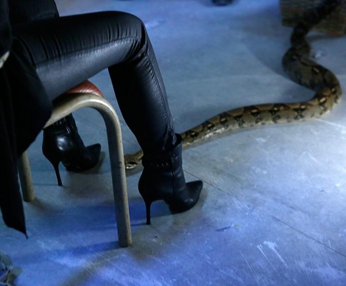 Cobra sobe nas pernas de Beatriz (Foto: TV Globo)