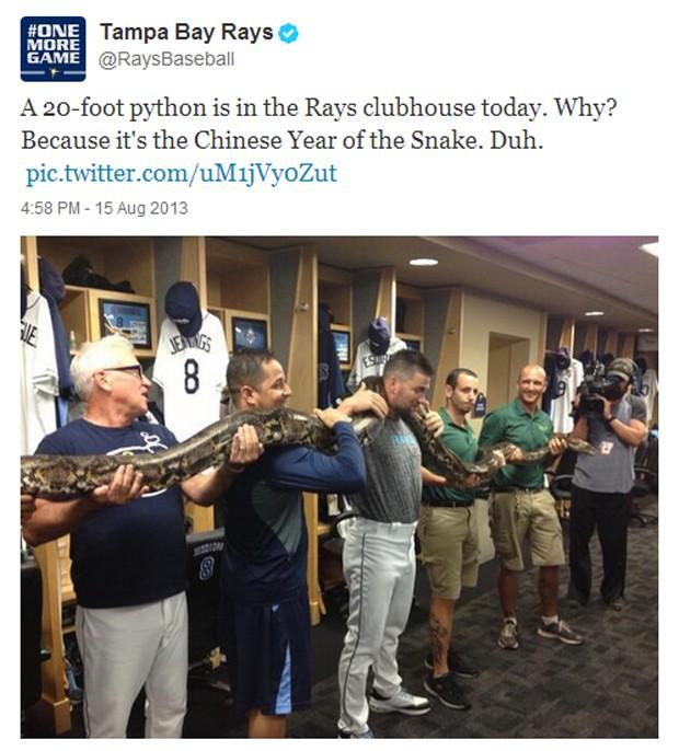 Twitter Tampa Bay cobra (Foto: Reprodução/Twitter)