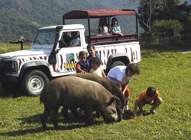 O hotel possui em média 500 animais que podem ser vistos pelas crianças durante o safári (Foto: Divulgação)