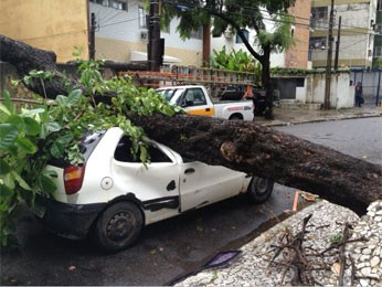 Carro foi atingido no bairro das Graças, no Recife (Foto: Ronan Tardin / Globo Nordeste)