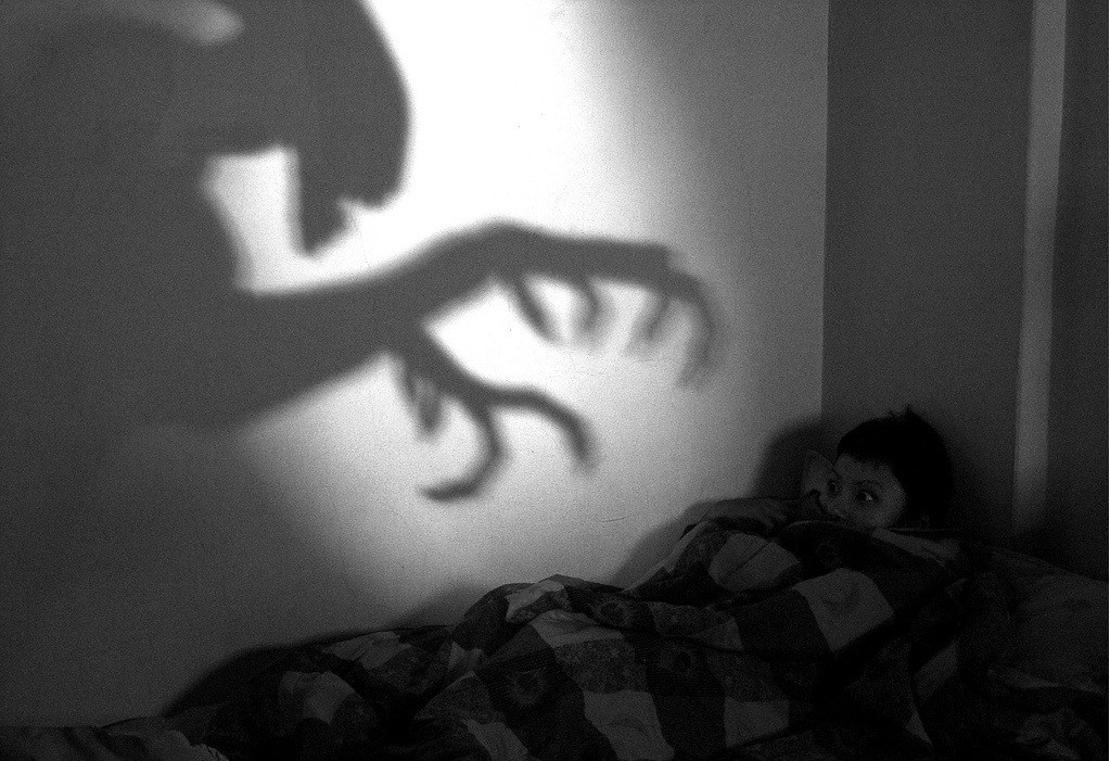 Sonhos ruins são bons, afinal?  (Foto: Chia-Hsin Ho )