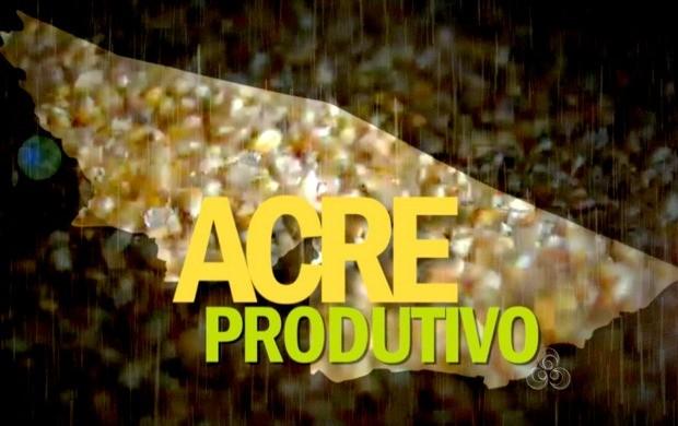 Série especial destacou atividades econômicas do estado. (Foto: Bom Dia Amazônia)