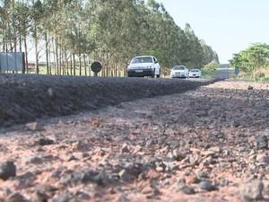 Rodovia Mário Perosa, no noroeste paulista (Foto: Reprodução/TV TEM)