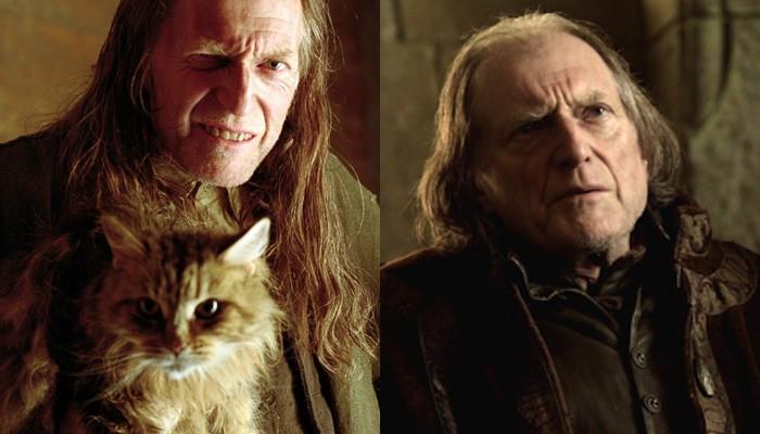 Conheça os atores que estiveram em Harry Potter e Game of Thrones (Foto: Divulgação )