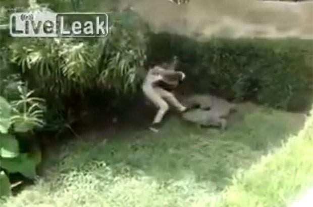 Mulher chegou a provocar o crocodilo, que avançou contra ela (Foto: Reprodução/LiveLeak)