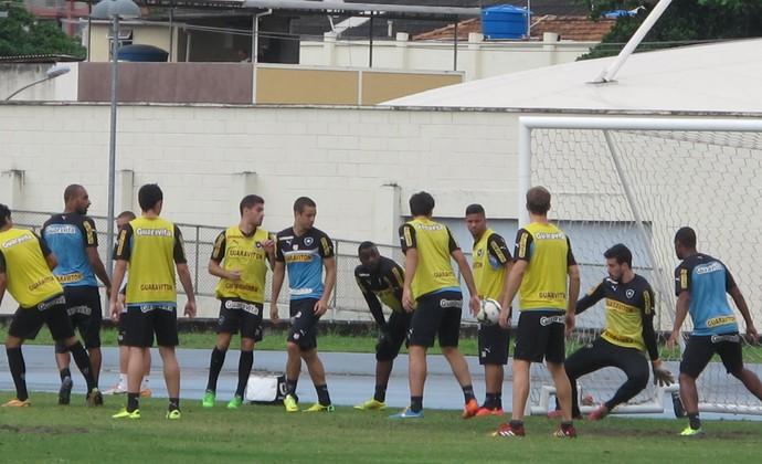 Treino Botafogo - 29/11 (Foto: Fred Huber)