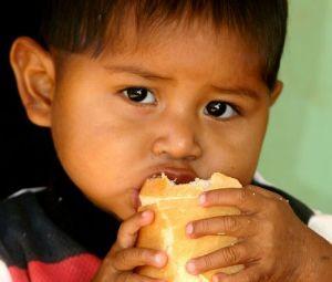 Xavantes precisam retomar hábitos alimentares, diz pesquisador. (Foto: Guilherme Filho / Secom-MT)